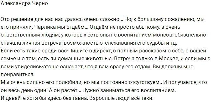 Александра Черно отдаёт щенка в добрые руки